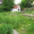 garten-hansen-klein_hintergarten