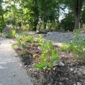 felde-klein-bepflanzte-hochbeete