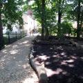 05_Stadtfinken-Gemeinschaftsgarten